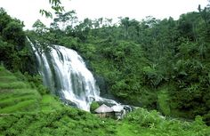 Curug Cikondang.(waterfall) at Cianjur - West Java - Indonesia