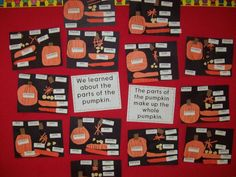 Fall Science - Labeling the Parts of a Pumpkin