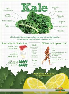 All Hail Kale! (Infographic) All Hail Kale! (Infographic) By Jason Wachob Did you know that kale has more iron than beef? Or more calcium than milk? These are just a few of the interesting facts in this infographic on kale from nutribullet. Get Healthy, Healthy Tips, Healthy Choices, Healthy Recipes, Healthy Herbs, Healthy Foods, Healthy Soup, Healthy Weight, Healthy Plate