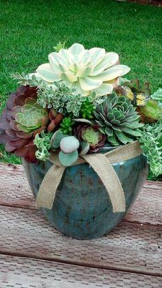Composition de succulentes dans grand pot -10 idées de composition florale avec des succulentes, plantes grasses et cactus - Esprit Laïta