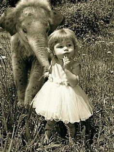A little girl and a baby elephant :)