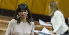 PSOE y Podemos confrontan en el Parlamento dos leyes similares contra la homofobia