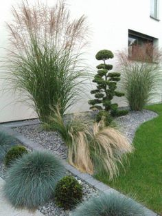 Simple And Small Front Yard Landscaping Ideas (Low Maintenance) Add value to your home with best front yard landscape. Explore simple and small front yard landscaping ideas with rocks, low maintenance, on a budget. Small Front Yard Landscaping, Diy Garden, Garden Design, Front Yard Landscaping Design, Ornamental Grasses, Small Backyard Landscaping, Outdoor Gardens, Rock Garden, Landscape