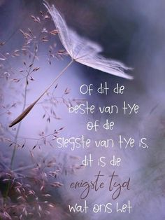 Wisdom Quotes, Qoutes, Afrikaanse Quotes, Goeie Nag, Scrapbook Quotes, True Words, Good Morning, Neon Signs, Mood
