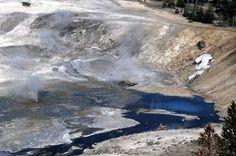 Milky blue pools of hot spring water lie at the edge of Porcelain Basin in Norris Geyser Basin.