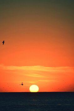 Atardeceres de Punta del Este, Dpto. de Maldonado - Uruguay
