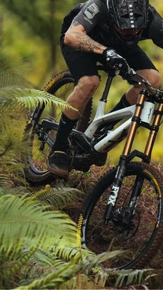 Mountain Biking Quotes, Mountain Biking Women, Mountain Bike Trails, Downhill Bike, Mtb Bike, Bmx Bikes, Motocross, Velo Dh, Freeride Mountain Bike