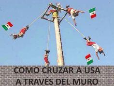 https://actualidad.rt.com/galerias/229614-mejores-bromas-muro-trump-circulan