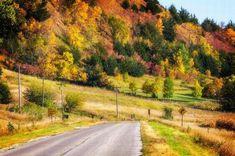Recorrido por los 50 estados de Estados Unidos | Naturaleza - Todo-Mail