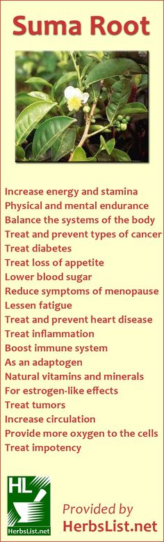 How to use Suma Root To Improve Your Health FOLLOW me on FACEBOOK --> https://www.facebook.com/susan.fowlerleeney Order to change your life! --> http://newlifewithsusie.eatlessfeelfull.com/