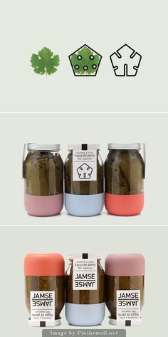 I finally found more on this very popular Jamse pin. It's grape leaves. No details yet about how the packaging was made curated by Packaging Diva PD created via https://www.behance.net/gallery/12689321/Jamse-Jamse
