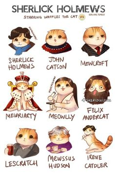 Brace Yourself: Pictures of a Scottish Fold as Anime, Disney, and Sherlock Holmes Characters Catster Sherlock Fandom, Drôle Sherlock Holmes, Sherlock John, Moriarty, Sherlock And Irene, Sherlock Cast, Johnlock, Destiel, Benedict Cumberbatch