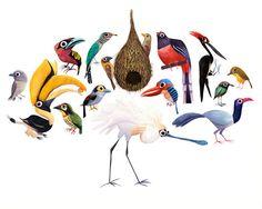 Aves by Brendan Wenzel