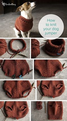 You love knitting, and you sure love creating stuff. You can use your love for…