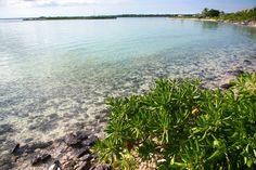 Flats just offshore Deep Water Cay | SBPR