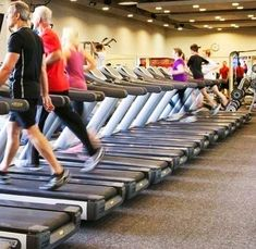 What is the best cardio exercise? Treadmill, elliptical, stationary bike or rower?