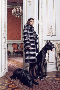 Welcome to Haute acorn online fur store. Step inside to find quality fur clothing. Chinchilla Fur Coat, Fox Fur Coat, Fashion Poses, Fur Fashion, Editorial, Fur Clothing, High Fashion Photography, Dog Photos, Fur Jacket