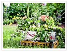 drink crates with flowers