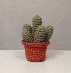 Crocheted Cactus  Amigurumi  Plant by meddywv on Etsy, $15.00
