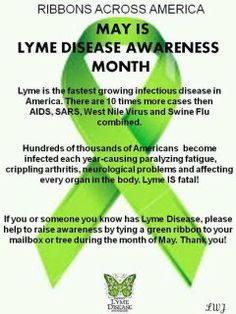 Lyme Disease Awareness Month 2013  Please become educated, because anyone can contract the disease. Speaking from a person that was infected June of 2009