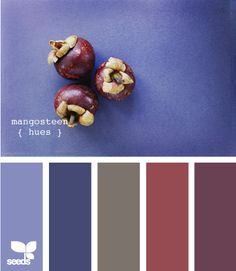 mangosteen hues - this is the purple that I want in my living room.  FINALLY - a room in my favorite color!!  And then the dining room could have a combo of gray and navy possibly.  YAY!!