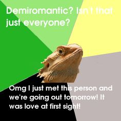 Demiromantic Dragon demiromanticism demiromantics romantic orientation
