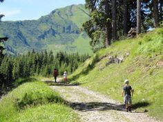 Lechtal - Rotlechtal Rinnen E614 richting Raaz Alpe