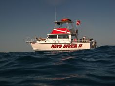 Keys Diver II offers SCUBA diving trips to the reefs and wrecks of Key Largo. Key Largo Snorkeling, Key Largo Diving, Fl Keys, Florida Keys, Kayak Paddle, Top Travel Destinations, Sunshine State, Key West