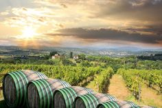 The Chianti region in central Tuscany: http://www.tuscanychic.com/traveling-in-tuscany/chianti-in-tuscany