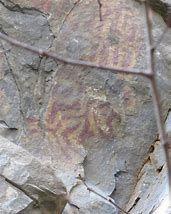 native american paint rock north carolina - Bing images American Indians, Native American, American Paint, Rock Art, North Carolina, Bing Images, Painting, Native Americans, Cave Painting