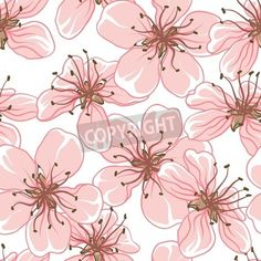 Cherry blossom background   Seamless flowers pattern  mural