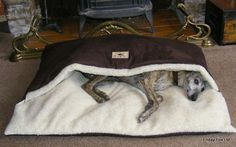 Warm, soft, comfortable and draft free, our Pita Snuggle Beds are perfect for dogs who love to burrow into their beds to snooze. Machine washable, they are made with a beautiful mocha faux suede outer, a soft, cream, sherpa fleece inner lining and a generous amount of duvet filler. This makes them perfect for dogs like whippets, greyhounds and dachshunds who love to nose into sleeping bags or slide under a warm duvet-type bed. These dog beds are not too bulky so they can be used equally ...