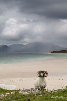 Seilebost - Isle of Harris, Scotland
