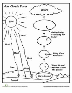How Clouds Form School Weather science, Science worksheets, Elementary science Kindergarten Science, Elementary Science, Science Classroom, Teaching Science, Science Education, Physical Science, 4th Grade Science Lessons, Preschool, Health Education