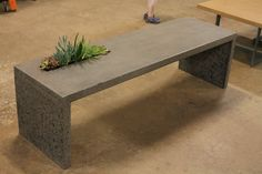 concrete bench with living feature by Zona Decorative Concrete www.zonacrete.com