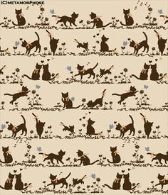 Cat Border/Melody Cat - Metamorphose  All of my want.