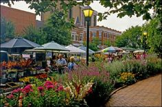 Farmers' Market.  Google Image Result for http://www.arkansas.com/images/photos/large/Fayetteville_%2520Farmers_%2520Market_%252005_l.jpg