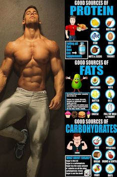 6 Of The Best And Most Beneficial Foods And Drinks To Eat Post Workout &; GymGuider 6 Of The Best And Most Beneficial Foods And Drinks To Eat Post Workout &; GymGuider Abnehmen Gewichtsverlust We […] training food Gym Workout Tips, Weight Training Workouts, Fitness Workouts, Post Workout, Fitness Tips, Muscle Fitness, Gain Muscle, Push Pull Workout Routine, Fitness Tracker