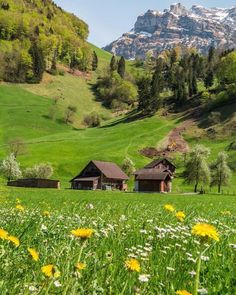 (📷: Tag your travel buddy 🤗� (Region Luzern) for a features🇨🇭 Places Around The World, Around The Worlds, Switzerland Vacation, Winterthur, Voyage Europe, Seen, Zermatt, Wonderful Picture, Belleza Natural