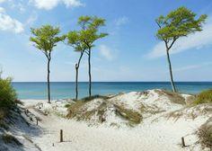 Seaside, Coastal, Road Trip, Relax, Ocean, Beach, Water, Travel, Outdoor