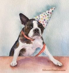 """""""Party Pup"""", watercolor Boston Terrier birthday dog painting by animal artist Teresa Silvestri.  Original available, in addition to fine art prints & cards. Photo reference thanks to Tory Brokenshire."""