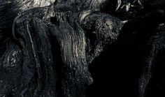 "Saatchi Art Artist John Bussey; Photography, ""Tree"" #art"