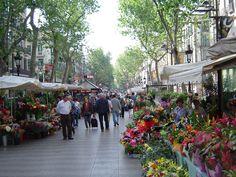 <p>Sicuramente Barcellona è la tipica tappa da vacanza low cost senza nessuna rinuncia al divertimento o alla voglia di cultura. Barcellona è tutto: cuore della movida spagnola, città in riva al mare, città di shopping e anche città di Gaudì con numerosi edifici e opere del grande artista. Ma soprattutto …</p>