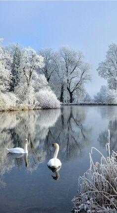 New Photography Nature Landscape Winter Ideas Image Nature, All Nature, Amazing Nature, Winter Photography, Landscape Photography, Nature Photography, Reflection Photography, Photography Series, Photography Jobs