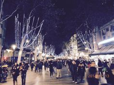 Les Rambles, Barcelona Nights