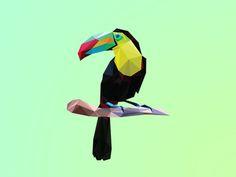 Poly Toucan #illustration #design #inspiration
