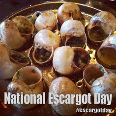 National Escargot Day - May 24, 2017