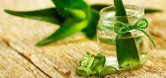 An Anti-Inflammatory Aloe Vera Smoothie To Help You Detox - Abby Perrin Ayurvedic Home Remedies, Psoriasis Remedies, Nail Psoriasis, Healthy Sport, Reverse Hair Loss, Reduce Hair Fall, Shake, Argan, Hair Loss Treatment