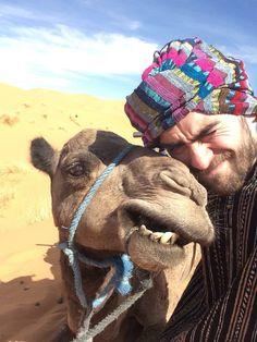 Camel, Crushes, Husband, Stars, Celebrities, Animals, Men, Cuba, Celebs
