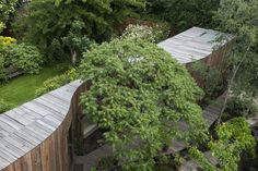 Tree House  / 6a Architects